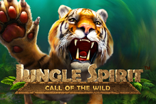 Jungle_spirit_228x152