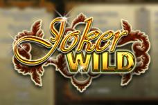 Joker-wild