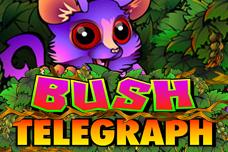 Bush_telegraph