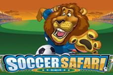 Soccer_safari