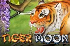 Tiger_moon