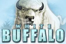 White_buffalo