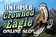 Untamed_crowned_eagle