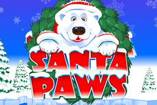 Santa_paws