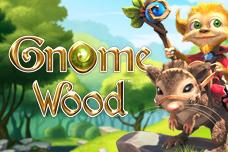 Lsbet_gnome_wood