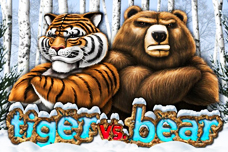 Tiger_vs_bear